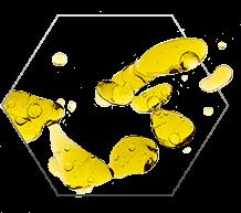 Nivelium składnik